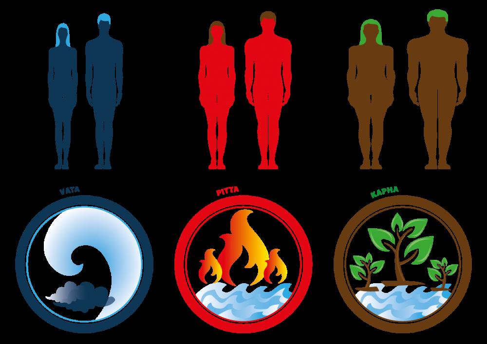 biotipi dosha ayurveda